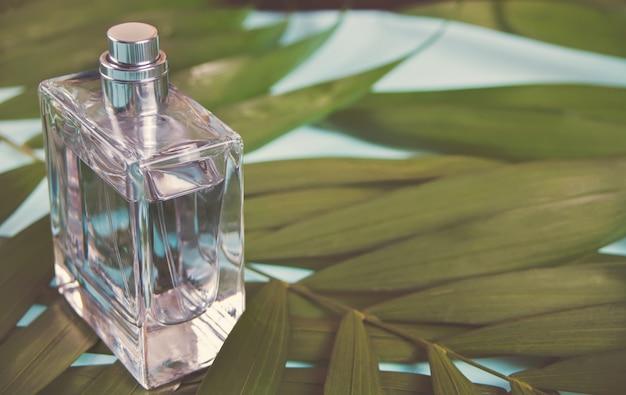 Flasche parfüm auf dem grünen palmblatt