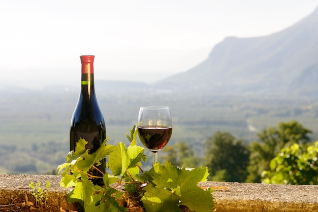 Flasche und glas rotwein mit einem weinberg