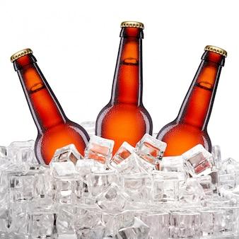 Flaschen bier im eis
