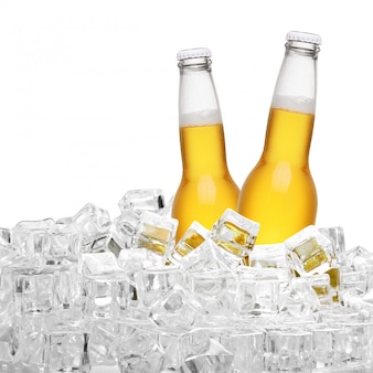 Flaschen bier in den eiswürfeln lokalisiert auf weißem hintergrund