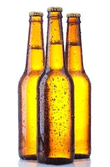 Flaschenbier isoliert auf weißem hintergrund