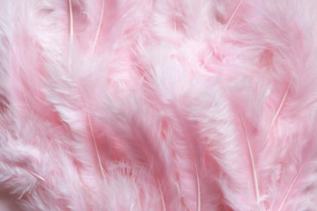 Flaumiger rosa federn ostern-hintergrund