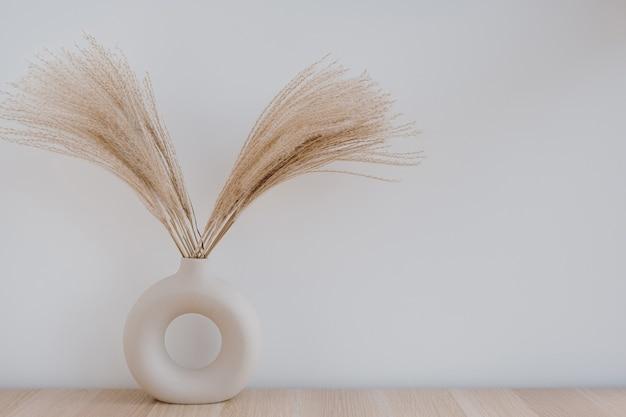 Flauschiges pampasgrasrohr in stilvoller vase gegen weiße wand. minimale innenausstattung.