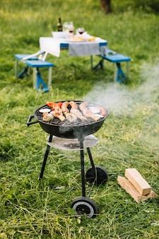 Fleisch vom grill in der natur