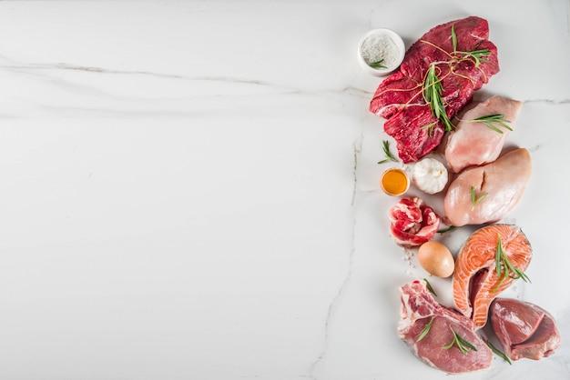 Fleischfressende eiweißdiät