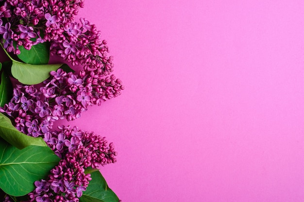 Fliederstraußblumen mit blättern auf minimalem purpur