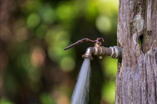 Fließendes wasser aus einem wasserhahn im alten baumhintergrund. wasserverbrauch und nutzungskonzept auf der tropischen insel borneo, malaysia. nahaufnahme