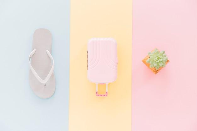 Flip flops; miniaturreisetasche und kaktuspflanze auf unterschiedlicher art hintergrund