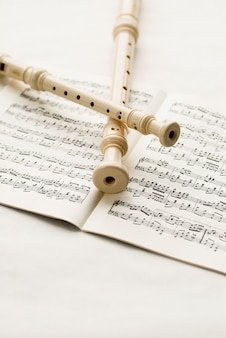 Flöten über musikalische notizen
