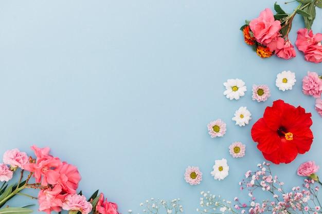 Floral zusammensetzung