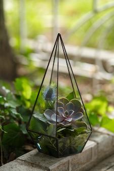 Florarium mit frischen saftigen blüten. event frische blumendekoration. floristen-workflow. hochzeitsbankett design