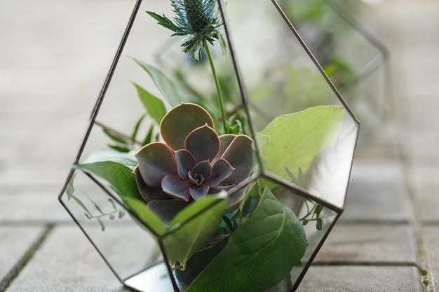Florarium mit frischen saftigen blumen. event frische blumendekoration