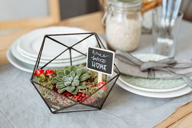 Florarium mit lebenden pflanzen auf dem küchentisch auf dem hintergrund eines schön dekorierten tisches.