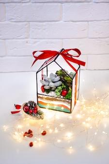 Florarium - zusammensetzung von sukkulenten, von stein, von sand und von glas, element des innenraums, inneneinrichtung, weihnachtsderor, geschenk des neuen jahres