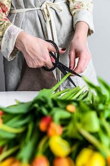 Floristin der jungen frau, die mit frischen blumentulpen arbeitet und blumenstrauß macht. weißer hintergrund