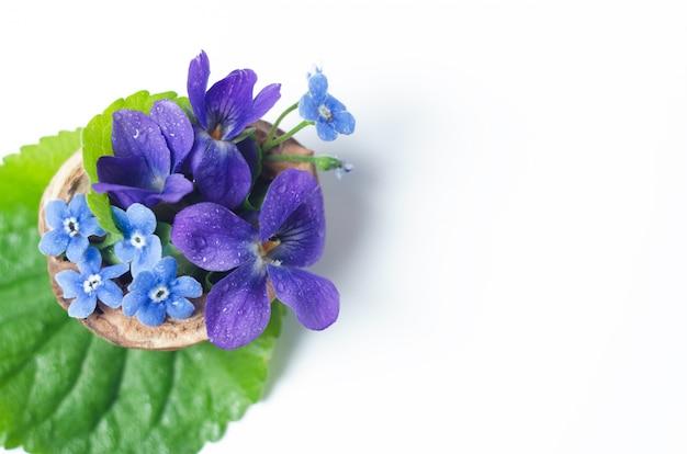 Floristische komposition mit veilchen