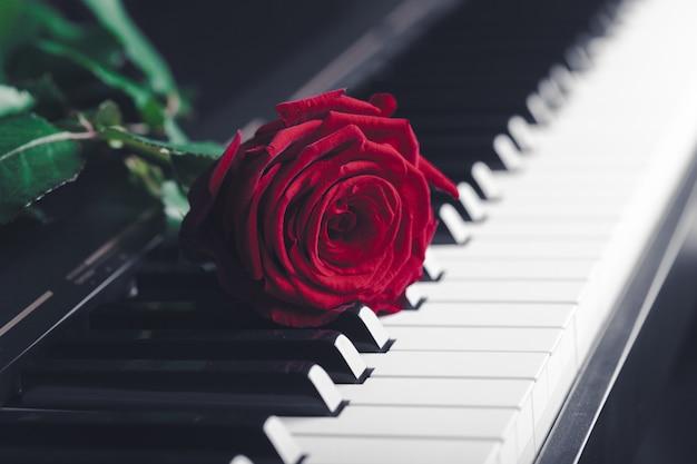 Flügel mit roter rose