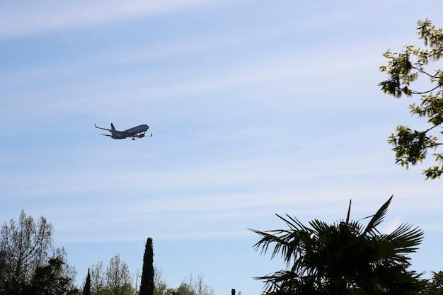 Flugzeuge nähern sich am finale über einer tropischen insel ein flugzeug in einem blauen himmel in der nähe eines astes