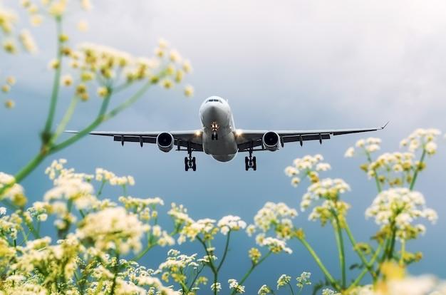 Flugzeugpassagierlandung am flughafen, die aussicht mit blumen.