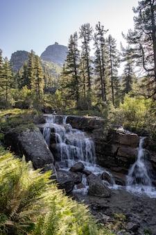 Fluss, der bunten wald des herbstes durchfließt. schöner fallfluß mit felsen und bäumen