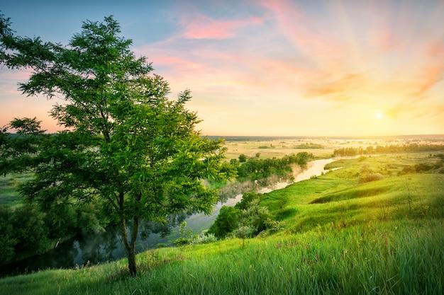 Fluss fließt im tal zur sonne