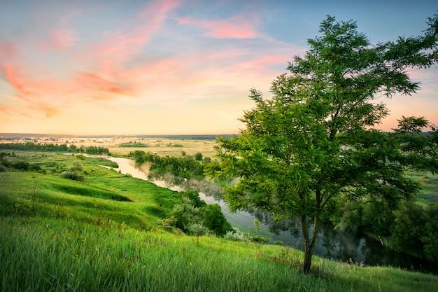 Fluss im tal mit grünem gras unter morgenhimmel