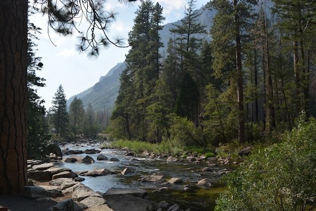 Fluss in der natur