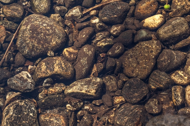 Flussbett - steine unter dem klaren wasser eines flusses