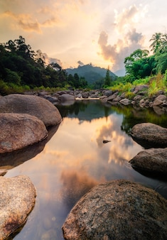 Flussstein und baum mit himmel und wolke bunt