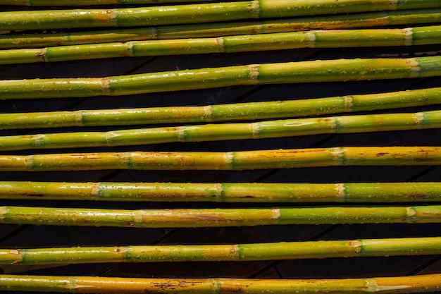 Flussstöcke grün frisch für die landwirtschaft