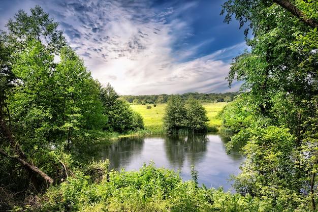 Flussufer mit grünen bäumen und einer wiese