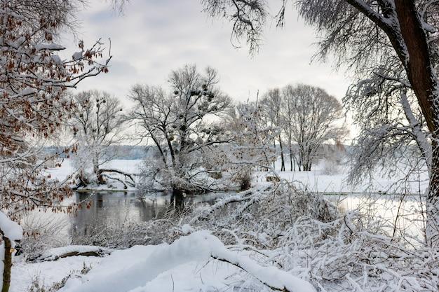 Flussufer nach einem schneefall an einem wolkigen wintertag. winterlandschaft