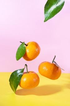 Flying food levitation mandarinen mit grünen blättern auf rosa und gelb