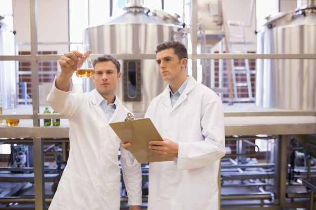 Fokussiertes wissenschaftlerteam, das becher betrachtet