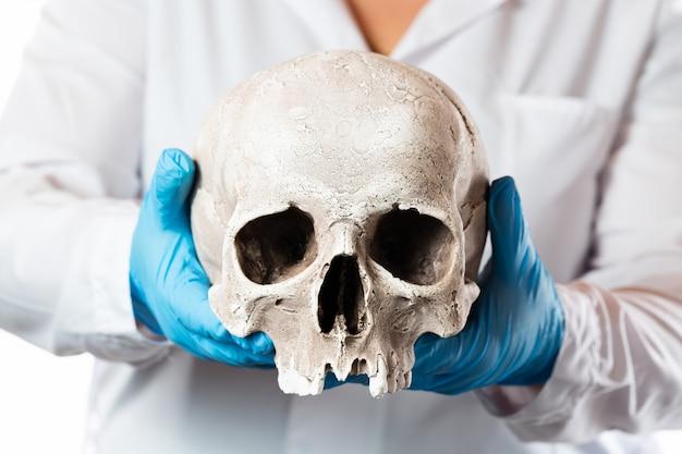 Forensischer pathologe. doktor in gummihandschuhen, die menschlichen schädel halten.