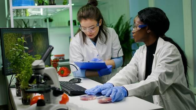 Forscher des medizinischen teams sprechen über vegetarisches fleisch, das an pflanzlichem rindfleischersatz arbeitet