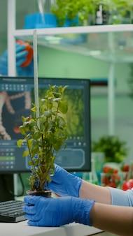 Forscherfrau, die öko-bäumchen misst, während sie die biologische transformation beobachtet