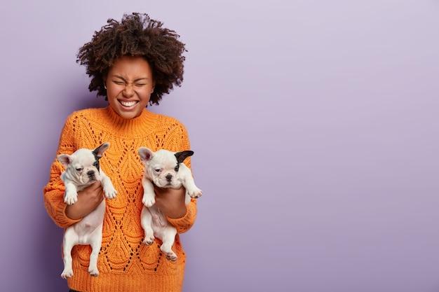 Foto der glücklichen afroamerikanischen frau hält zwei monate welpen, gibt menschen in rechten händen, trägt warmen orange pullover. lockiges mädchen mit ihren geliebten rassehunden. tierkommunikationskonzept