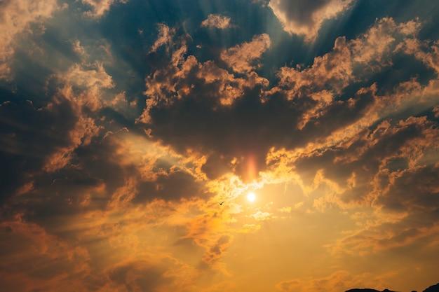Foto der möwe im himmel mit wolken
