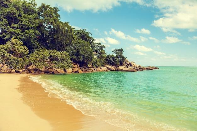 Foto der tropischen landschaft mit weinleseeffekt