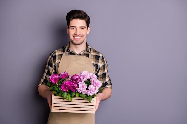 Foto des attraktiven arbeiters, der hände hält erstaunliche rosa blumen, die im topf wachsen, der kauft, frische blumen zu kaufen, ohne zu schneiden, tragen schürze kariertes hemd isolierte graue farbwand