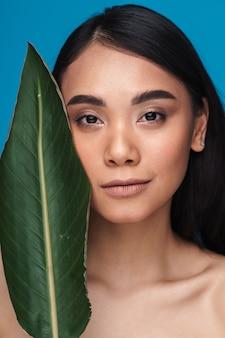 Foto einer schönen positiven lächelnden asiatischen jungen frau, die lokalisiert auf blauer wand mit grünem pflanzenblatt aufwirft.