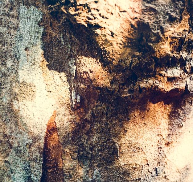 Foto von sonnenschein auf der holzoberfläche