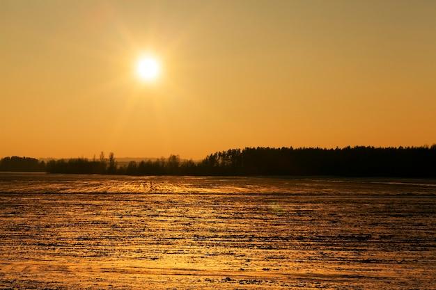Fotografiertes feld mit schnee bedeckt in der wintersaison. das bild zeigt die gelbe sonne bei sonnenuntergang