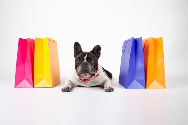 Französische bulldogge, die auf weißem hintergrund mit einkaufstaschen liegt