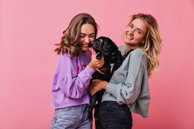 Französische bulldogge leckt lächelndes brünettes mädchen. glückselige blondhaarige dame, die schwarzen welpen auf pastell hält.