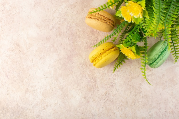 Französische macarons der draufsicht mit pflanze auf dem süßen keks des rosa tischkuchenzuckers