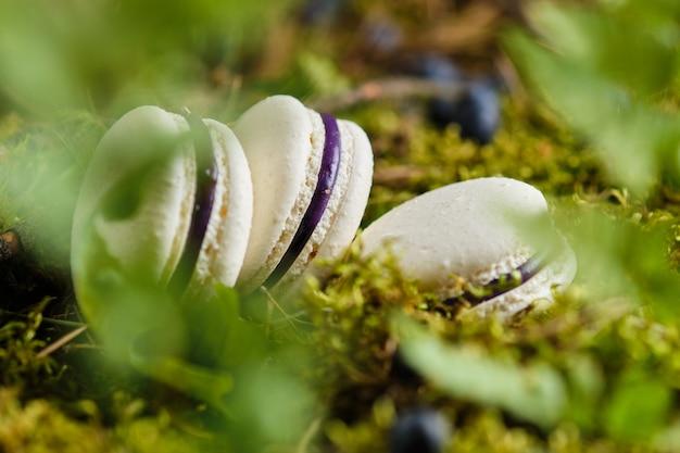 Französische macarons mit heidelbeerfüllung. zartes dessert mit waldbeeren.
