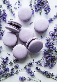 Französische macarons mit lavendelgeschmack und frischen lavendelblüten auf weißem fliesenhintergrund