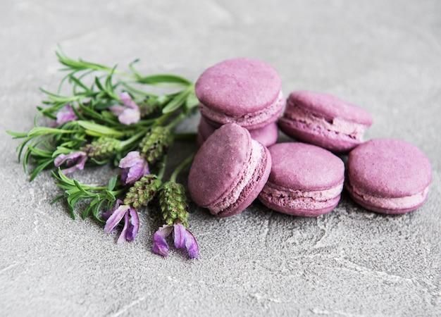 Französische macarons mit lavendelgeschmack